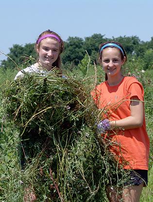 Girls holding eradicated invasives