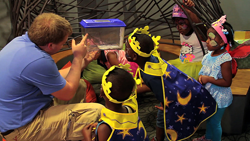 Children learning about insects