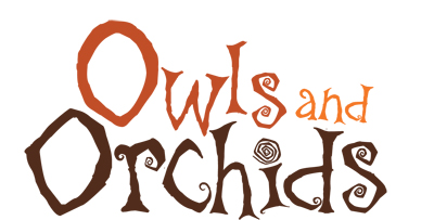 Owls and Orchids logo