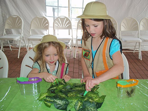 Girls inspect leaves at a birthday party