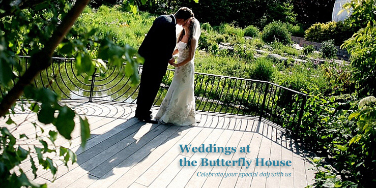 Wedding in the Butterfly Garden