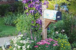 Plantings around a mailbox