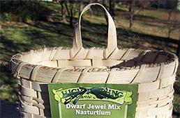 Seed Packet Basket detail