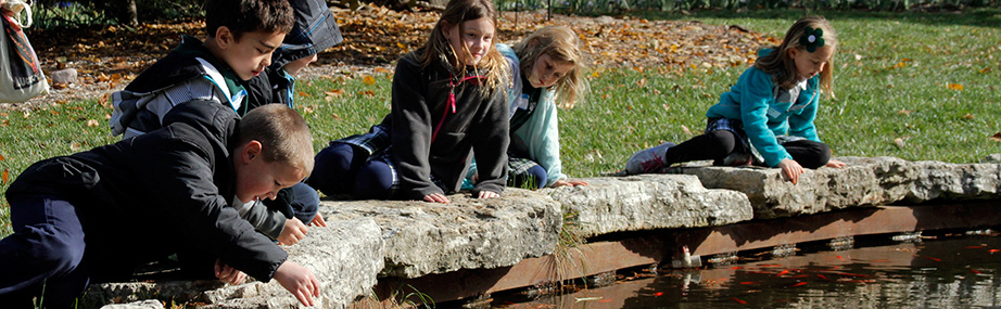 Students look down at fish in pond