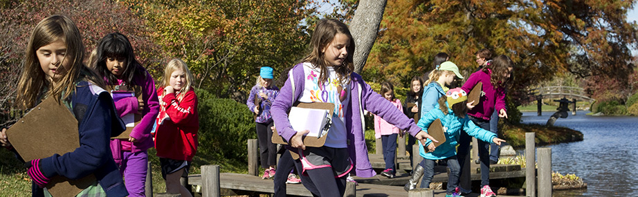 Girl scouts cross the zig zag bridge