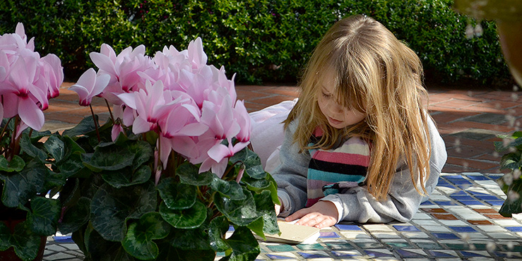 Girl drawing in the Temperate House