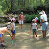 Kids and adults investigating the creek