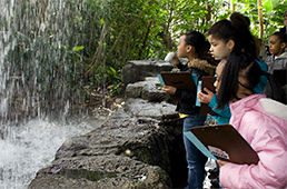 Students in Climatron conservatory