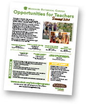 Opportunities for Teachers flyer