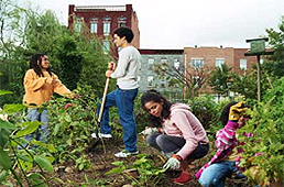 Kids gardening in an urban lot