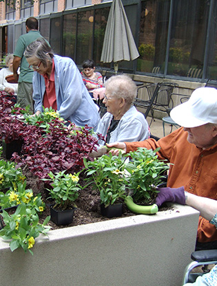 Seniors planting in a raised bed garden