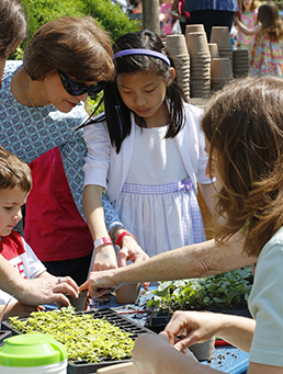 Children take part in a planting activity