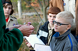 Cub Scouts investigate a plant in the Japanese Garden