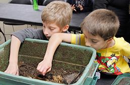Cub scouts explore a worm composting bin