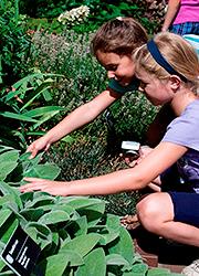 Girls in sensory garden