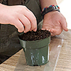 Hands planting seeds in pot