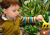 Boy potting a plant