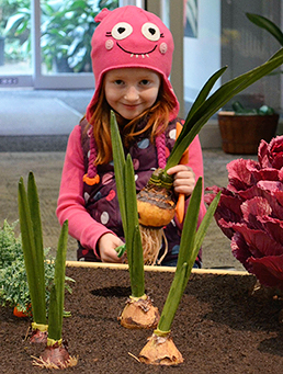 Girl harvests pretend onions at Digging In exhibit