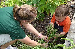Teacher and student in vegetable patch