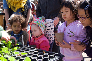 Kids potting up plants to take home