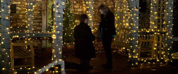 Man Proposing To Woman At Garden Glow