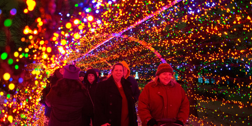 Tunnel of Light at Garden Glow