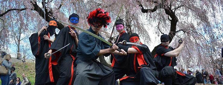 Sumurai at Japanese Festival