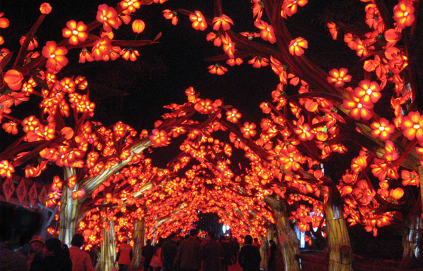 Lantern Festival: Magic Reimagined