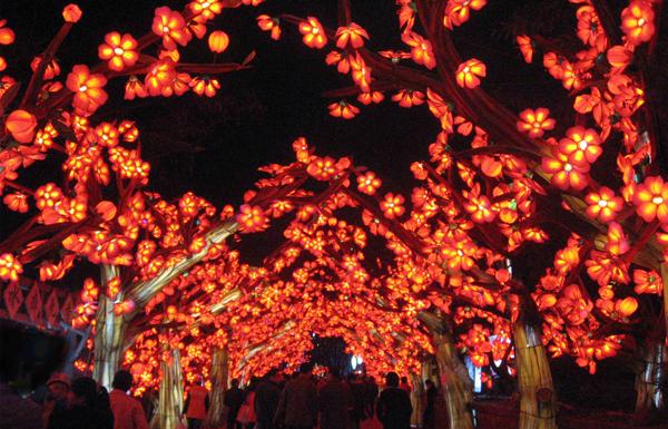 Illuminated cherry blossom archway