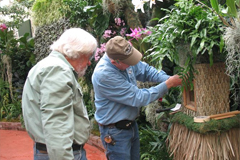 Orchid Show installation