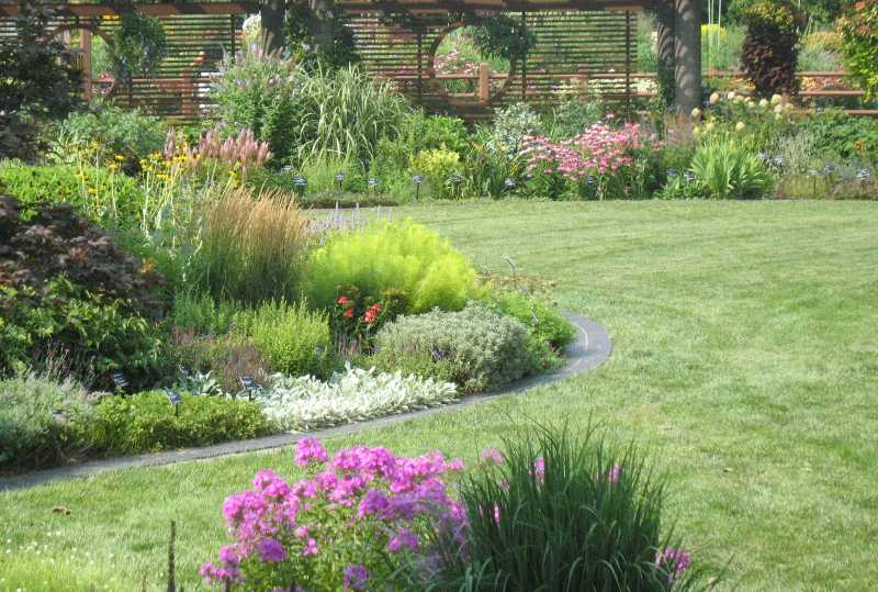 Lawn landscape garden design for Small garden lawn designs