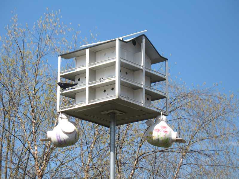 10 Ways to Add Biodiversity to Your Garden Missouri Erfly Garden Layout Design on