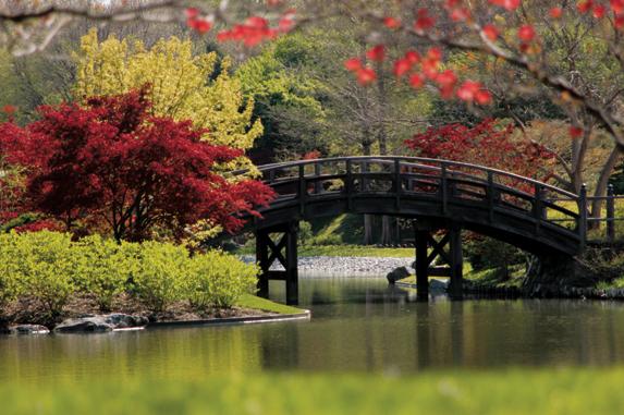 International Gardens