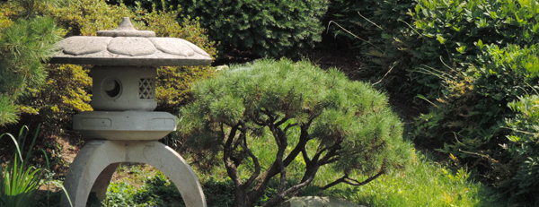Stone lantern in the Japanese Garden