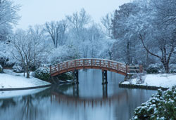 Japanese Garden drum bridge in snow