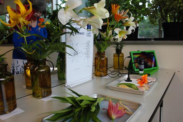 PlantLab in the Edward Jones Hall