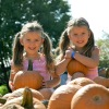 Pumpkin fun in the patch!