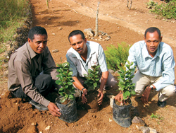 Collaboration Madagascar