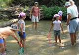 Children and parents wading in the creek