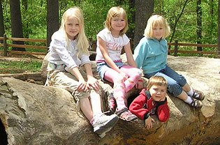Kids pose on a crawl-through log