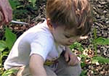 Child digs in soil