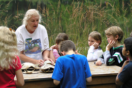 Students learning about turtles