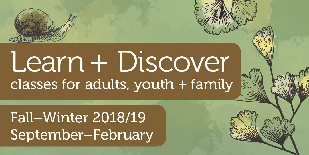 Learn and Discover - Fall/Winter 2018-2019