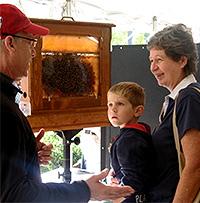 Beekeeper talks with festival-goers