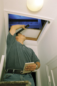 Contractor inspecting attic