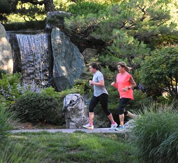Runners in the Japanese Garden
