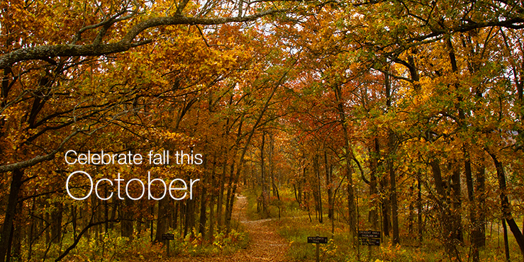 Celebrate Fall This October