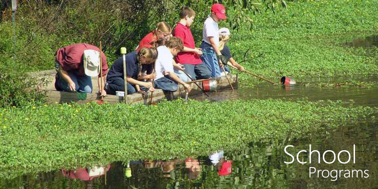School Programs--students and teacher at edge of pond