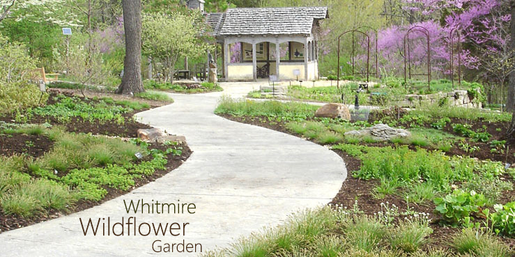 Whitmire Wildflower Garden