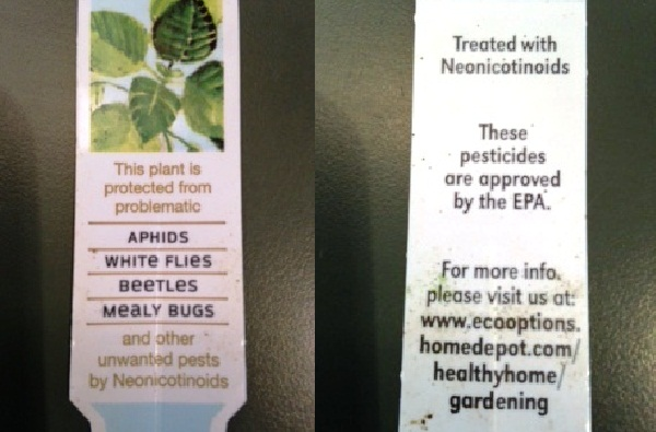 Read Plant Labels!